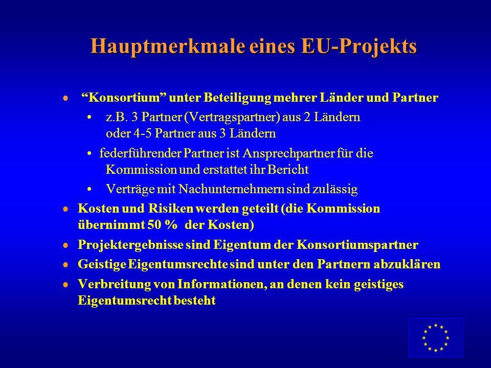 Hauptmerkmale eines EU-Projekts