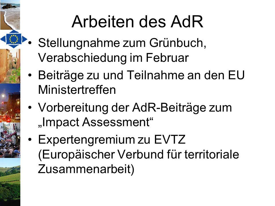 Arbeiten des AdR Stellungnahme zum Grünbuch, Verabschiedung im Februar