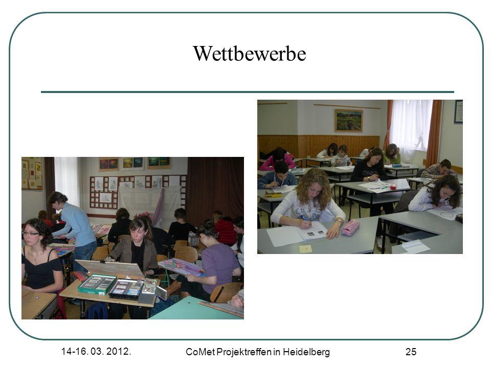 CoMet Projektreffen in Heidelberg