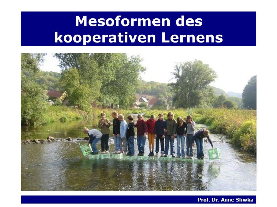 Mesoformen des kooperativen Lernens