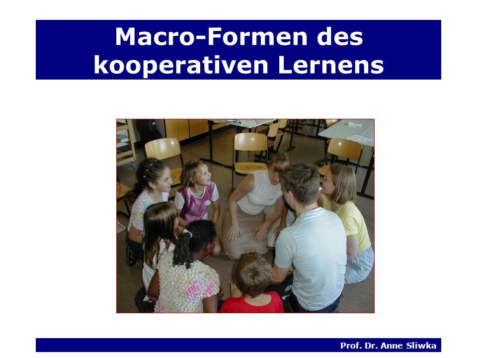 Macro-Formen des kooperativen Lernens