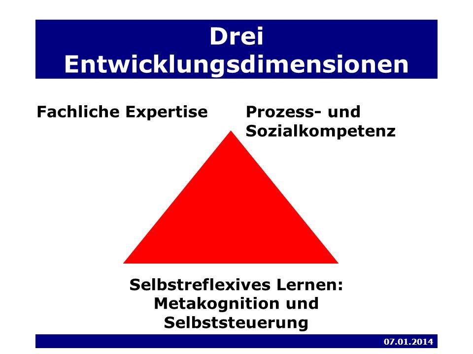 Drei Entwicklungsdimensionen