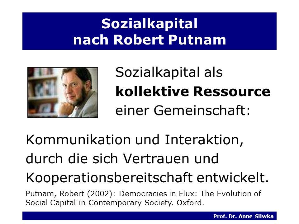Sozialkapital nach Robert Putnam