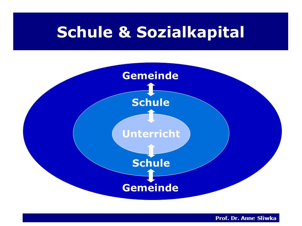Schule & Sozialkapital