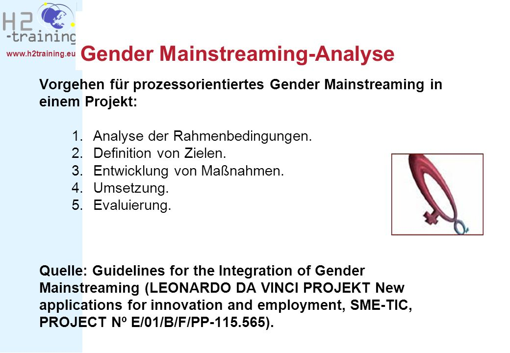 Gender Mainstreaming-Analyse