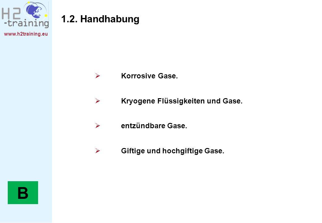 B 1.2. Handhabung Korrosive Gase. Kryogene Flüssigkeiten und Gase.