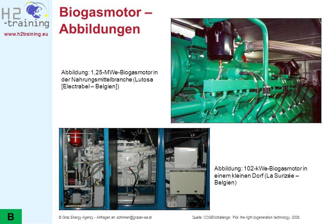 Biogasmotor – Abbildungen