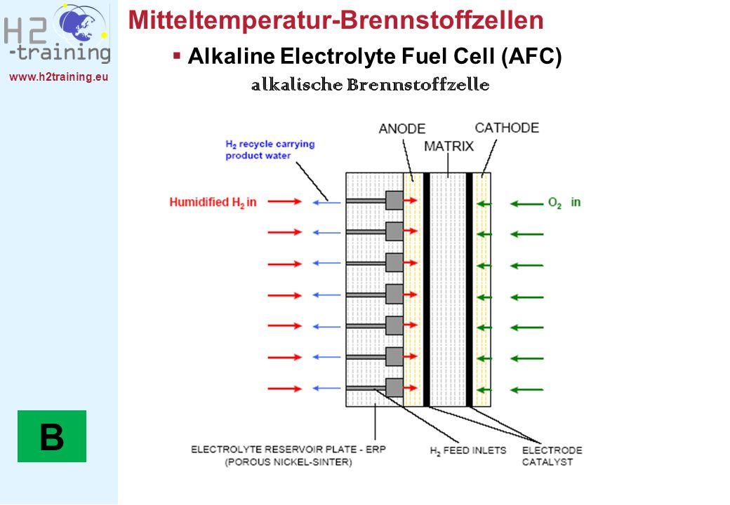 Alkaline Electrolyte Fuel Cell (AFC) alkalische Brennstoffzelle