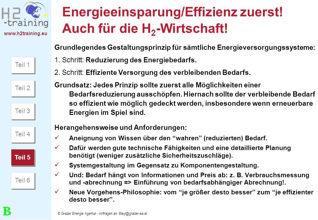 Energieeinsparung/Effizienz zuerst! Auch für die H2-Wirtschaft!