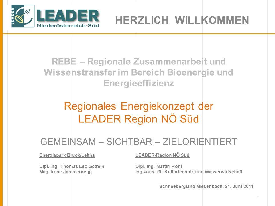 Regionales Energiekonzept der LEADER Region NÖ Süd