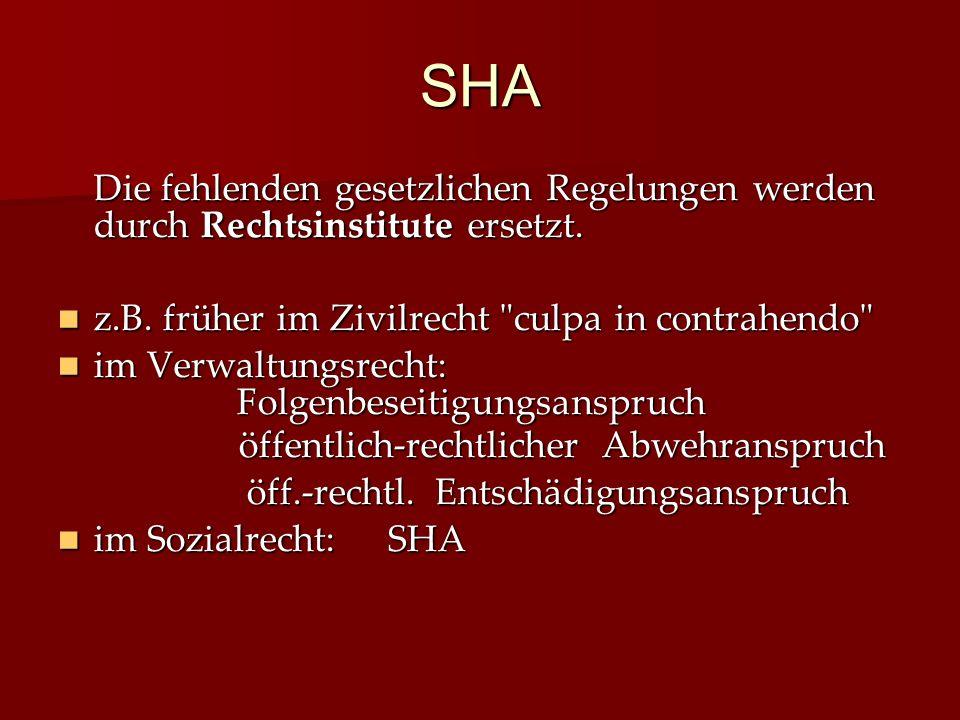 SHA Die fehlenden gesetzlichen Regelungen werden durch Rechtsinstitute ersetzt. z.B. früher im Zivilrecht culpa in contrahendo