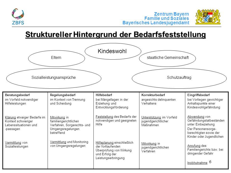 Struktureller Hintergrund der Bedarfsfeststellung