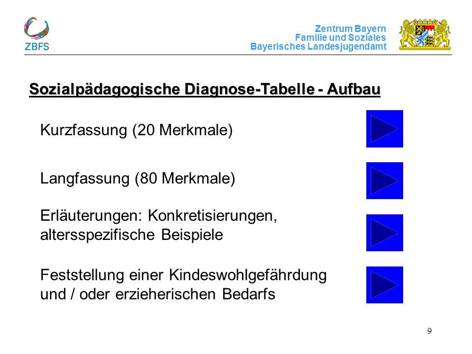 Sozialpädagogische Diagnose-Tabelle - Aufbau