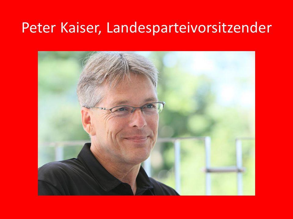 Peter Kaiser, Landesparteivorsitzender