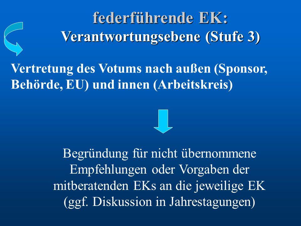 federführende EK: Verantwortungsebene (Stufe 3)