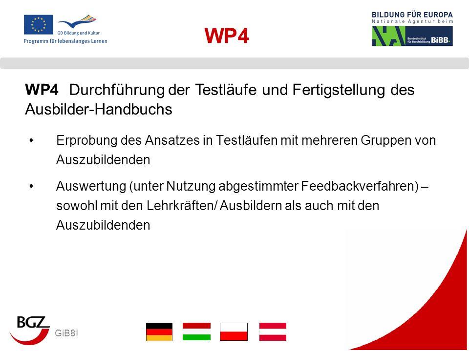 WP4 WP4 Durchführung der Testläufe und Fertigstellung des Ausbilder-Handbuchs.