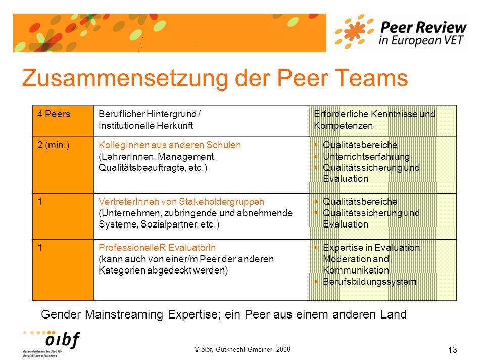 Zusammensetzung der Peer Teams