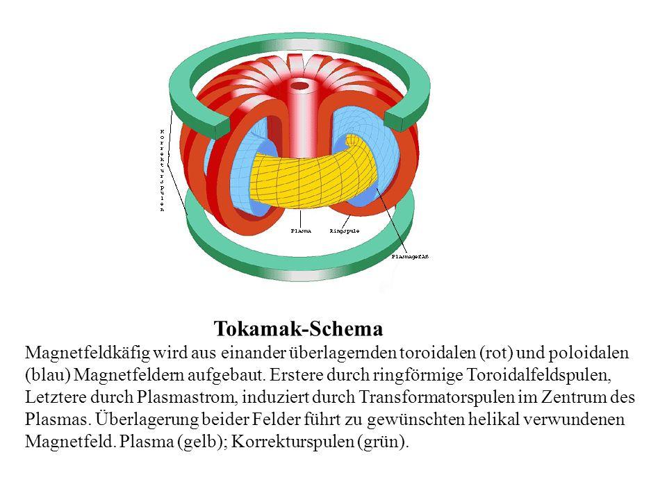 Tokamak-Schema