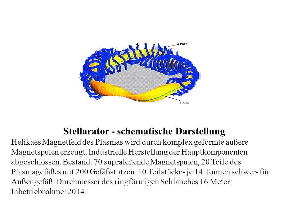 Stellarator - schematische Darstellung