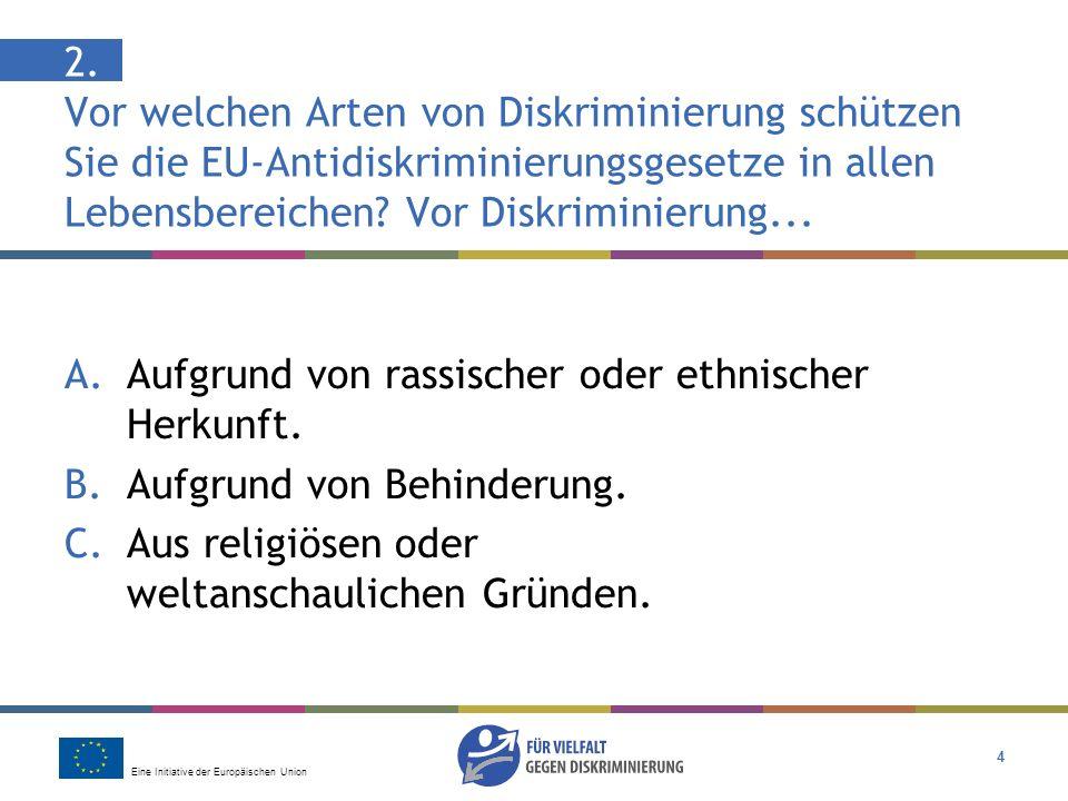 2. Vor welchen Arten von Diskriminierung schützen Sie die EU-Antidiskriminierungsgesetze in allen Lebensbereichen Vor Diskriminierung...