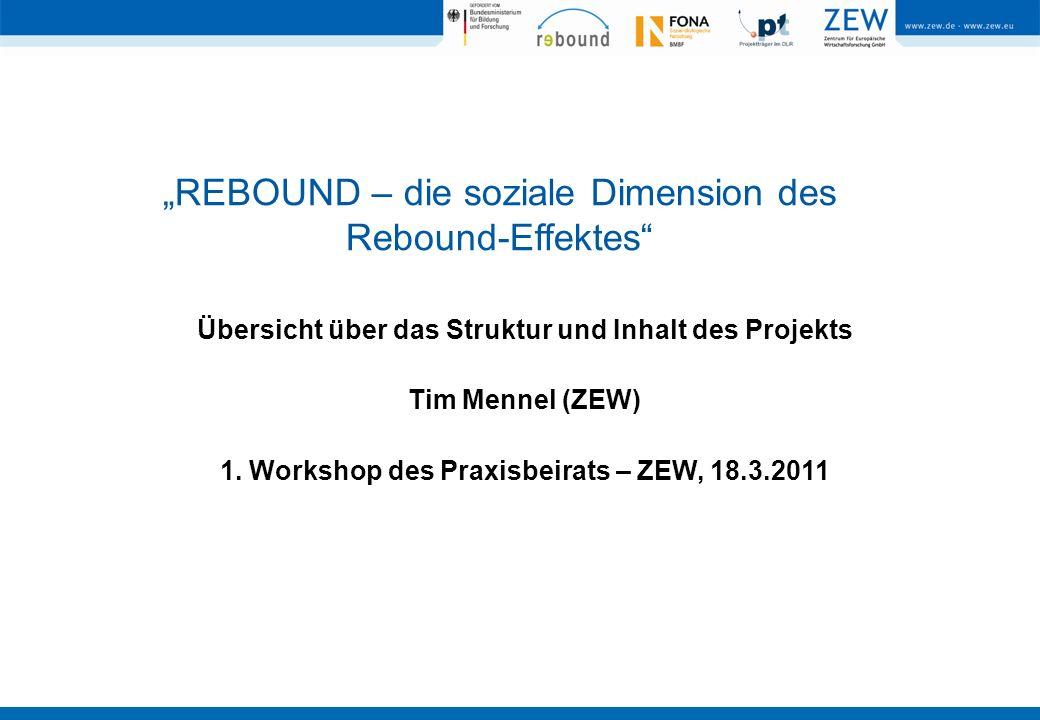 """""""REBOUND – die soziale Dimension des Rebound-Effektes"""