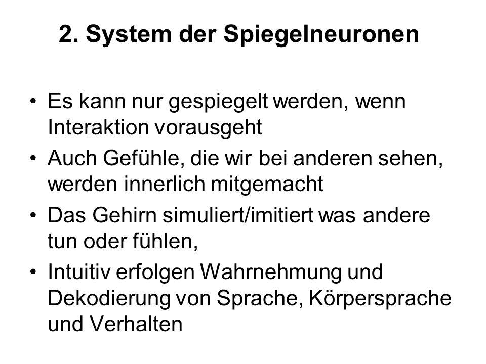 2. System der Spiegelneuronen