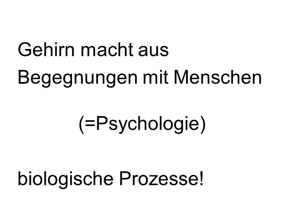 Gehirn macht aus Begegnungen mit Menschen (=Psychologie) biologische Prozesse!