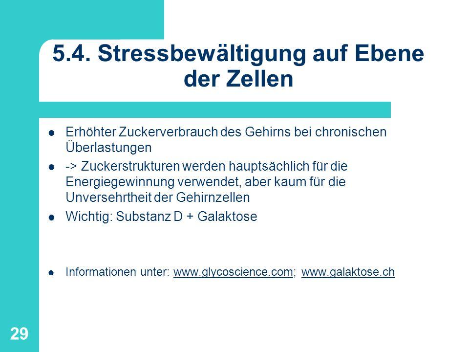 5.4. Stressbewältigung auf Ebene der Zellen
