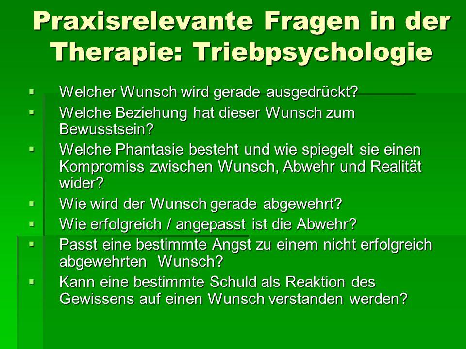 Praxisrelevante Fragen in der Therapie: Triebpsychologie