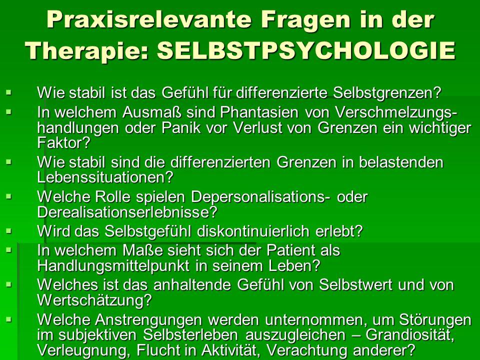 Praxisrelevante Fragen in der Therapie: SELBSTPSYCHOLOGIE