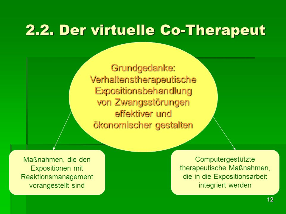 2.2. Der virtuelle Co-Therapeut