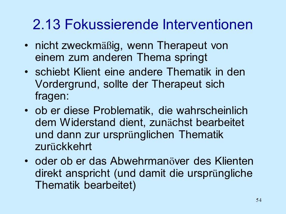 2.13 Fokussierende Interventionen