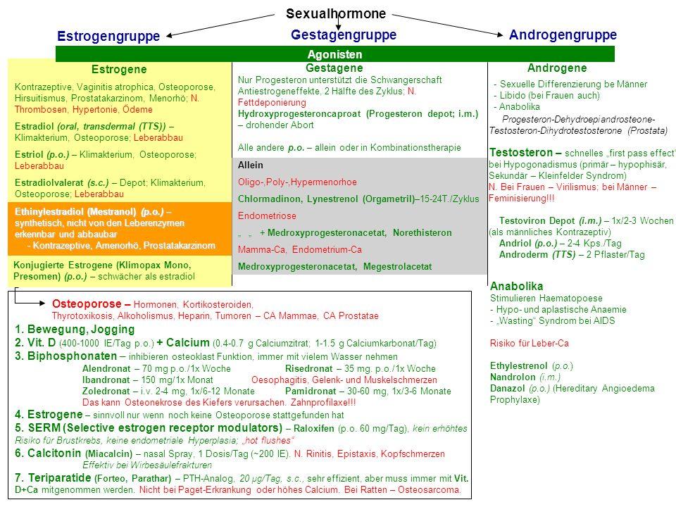 Sexualhormone Estrogengruppe Gestagengruppe Androgengruppe Agonisten