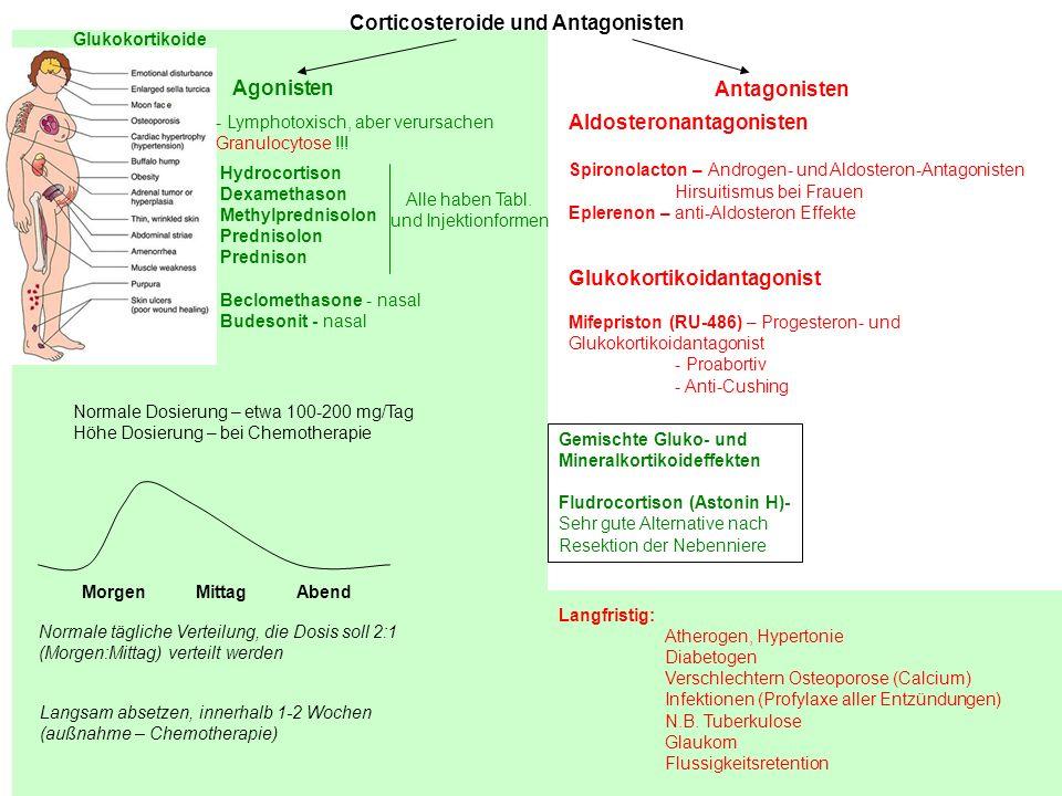 Corticosteroide und Antagonisten