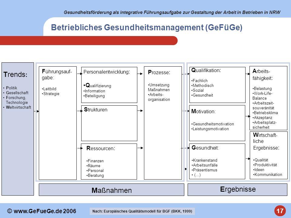 Betriebliches Gesundheitsmanagement (GeFüGe)