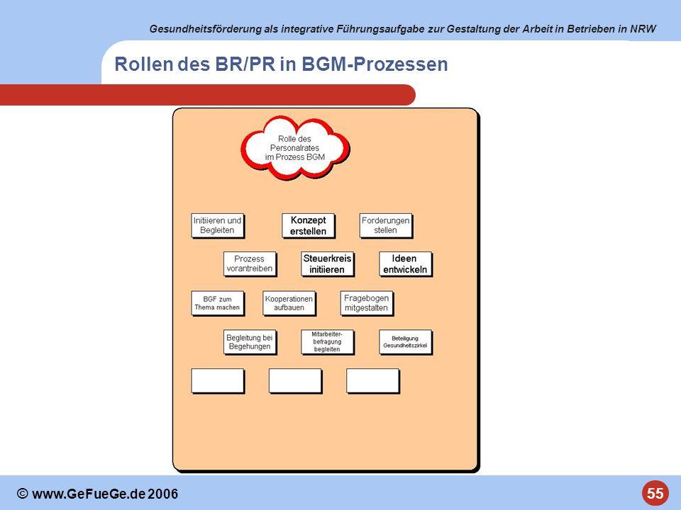 Rollen des BR/PR in BGM-Prozessen