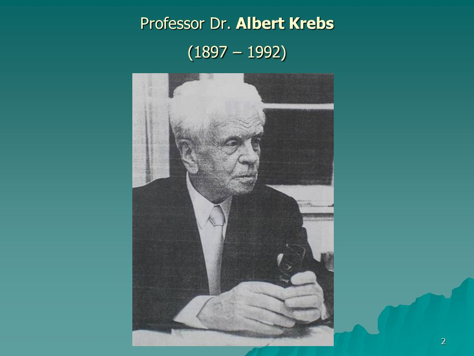 Professor Dr. Albert Krebs (1897 – 1992)