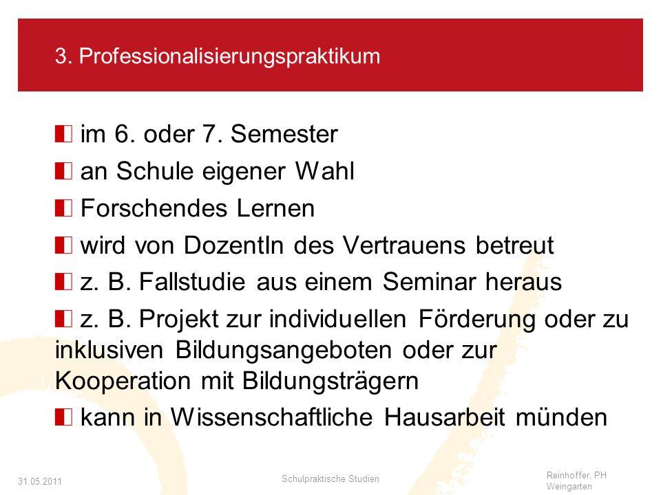 3. Professionalisierungspraktikum
