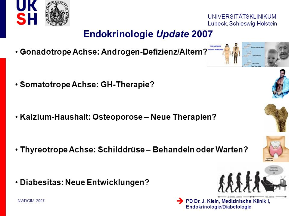 Endokrinologie Update 2007