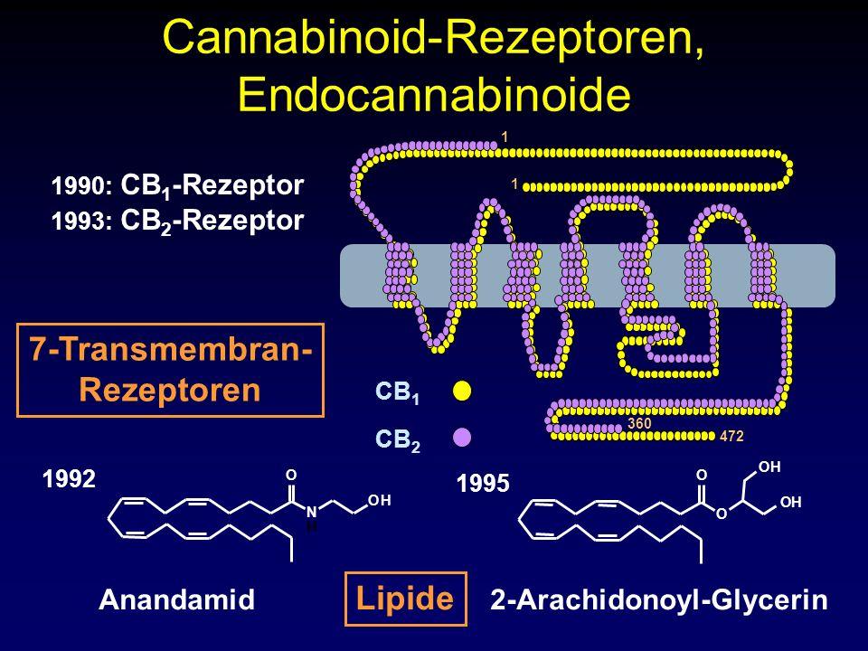 2-Arachidonoyl-Glycerin