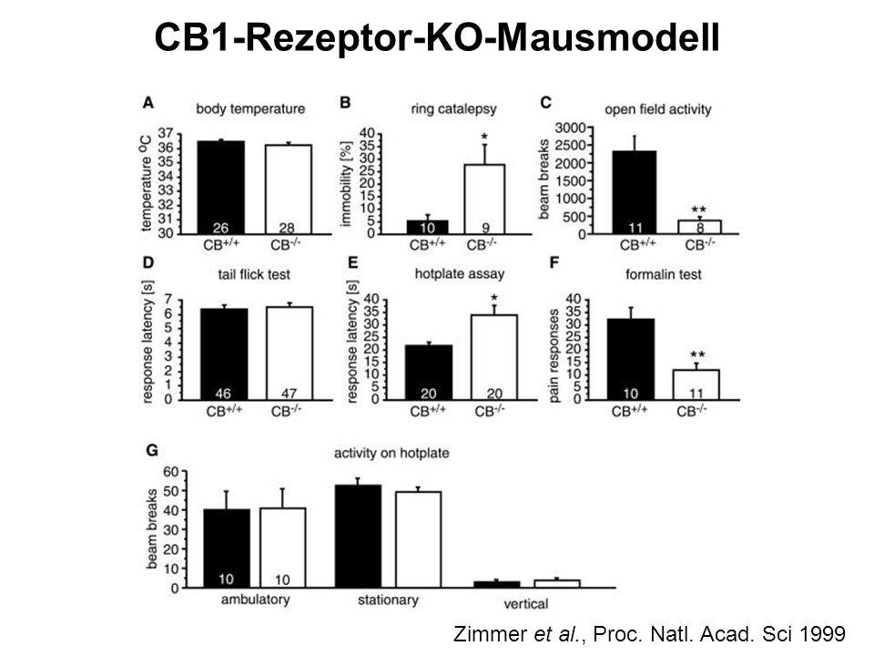 CB1-Rezeptor-KO-Mausmodell