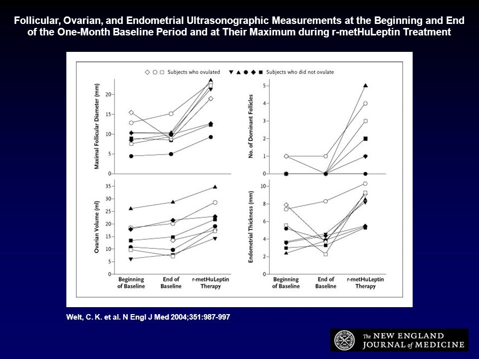 Follicular, Ovarian, and Endometrial Ultrasonographic Measurements at the Beginning and End of the One-Month Baseline Period and at Their Maximum during r-metHuLeptin Treatment