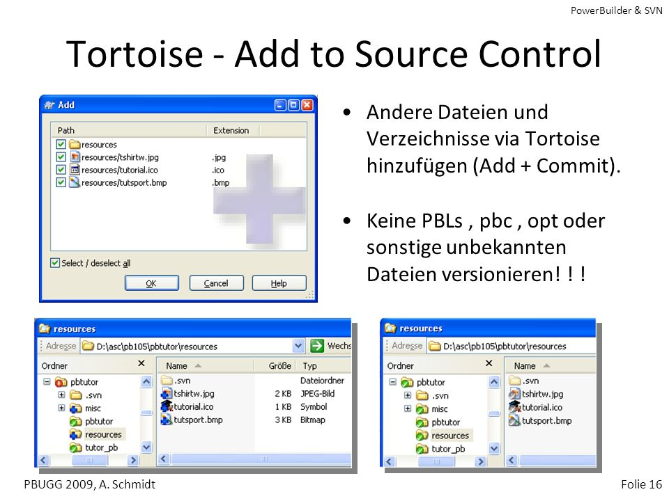 Tortoise - Add to Source Control