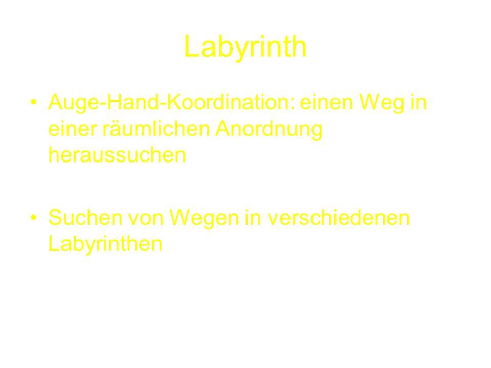 Labyrinth Auge-Hand-Koordination: einen Weg in einer räumlichen Anordnung heraussuchen.