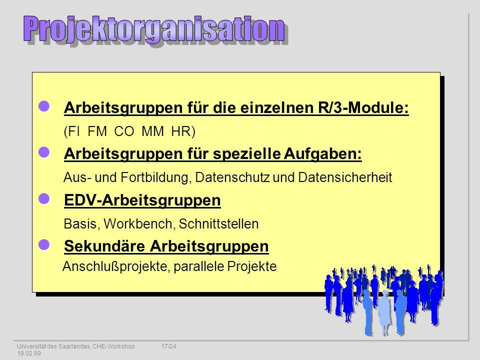 Projektorganisation Arbeitsgruppen für die einzelnen R/3-Module: