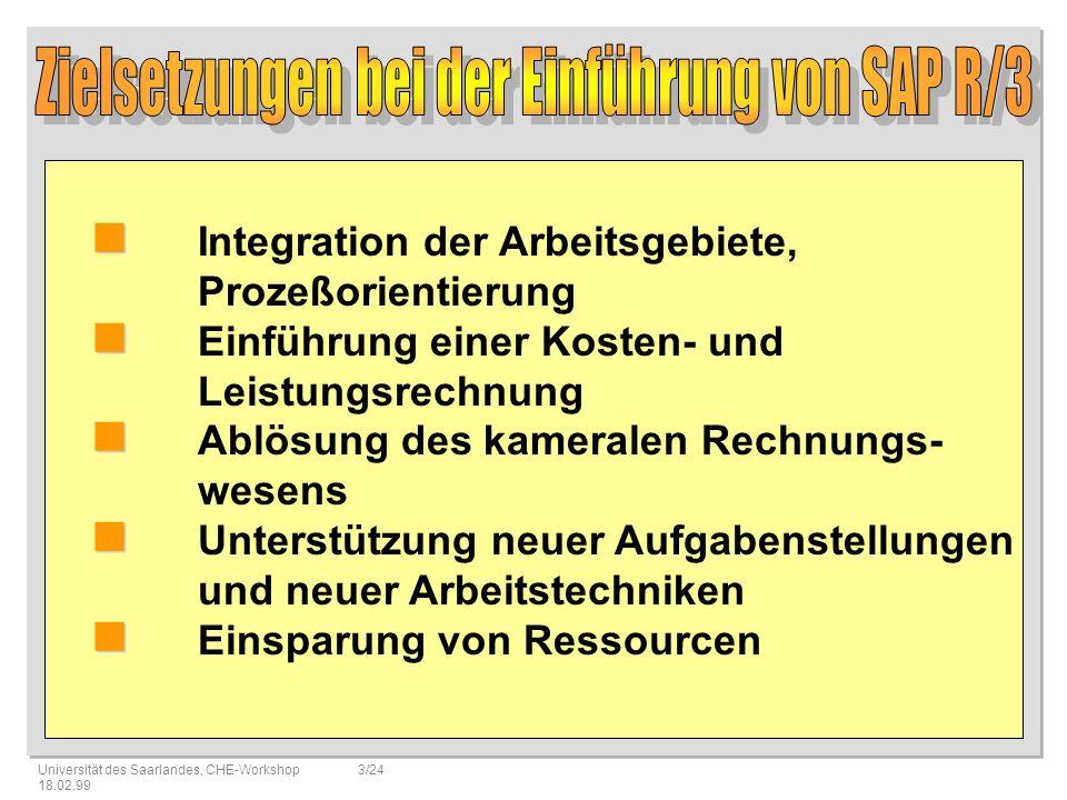Zielsetzungen bei der Einführung von SAP R/3
