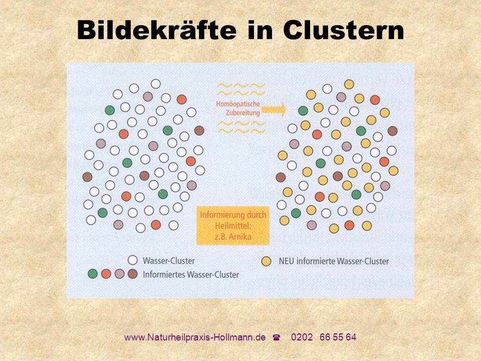 Bildekräfte in Clustern