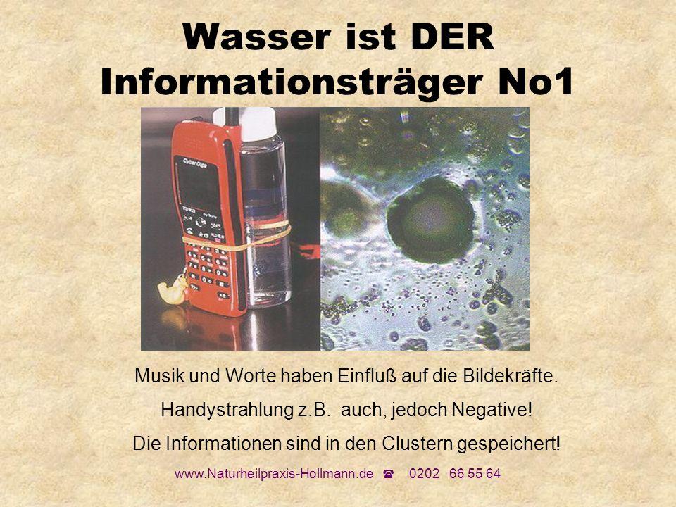 Wasser ist DER Informationsträger No1