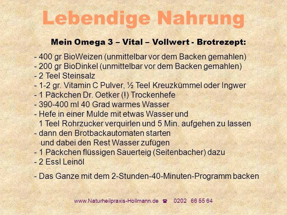 Lebendige Nahrung Mein Omega 3 – Vital – Vollwert - Brotrezept:
