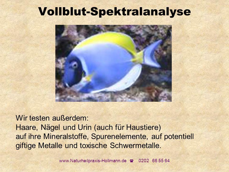 Vollblut-Spektralanalyse
